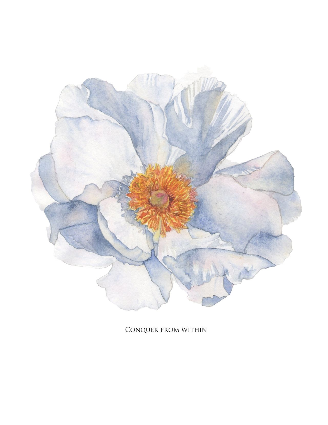 Flowers Tumblr Watercolor Pinterest Watercolor Print