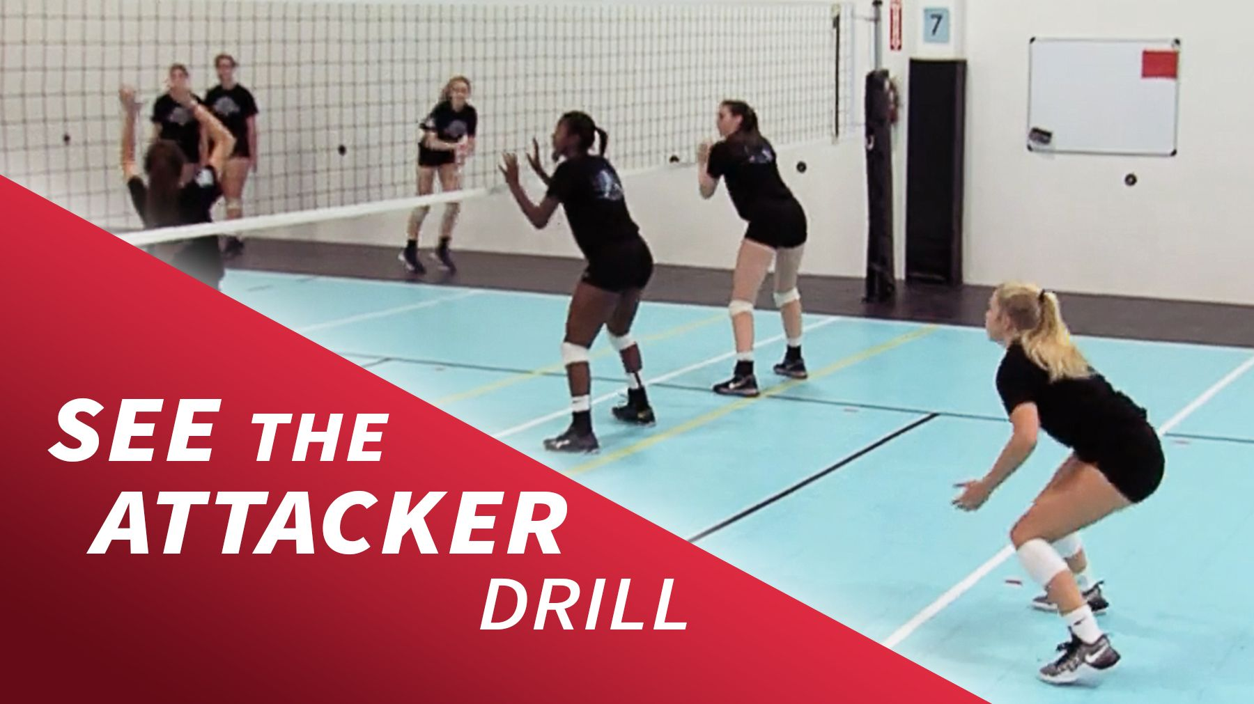 See The Attacker Drill The Art Of Coaching Volleyball Volleyball Training Volleyball Practice Volleyball Workouts