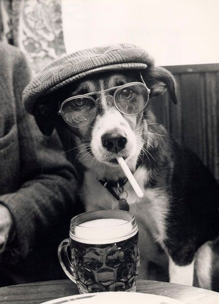 Ill get to your problems shortly human. Im finishing a smoke and a pint