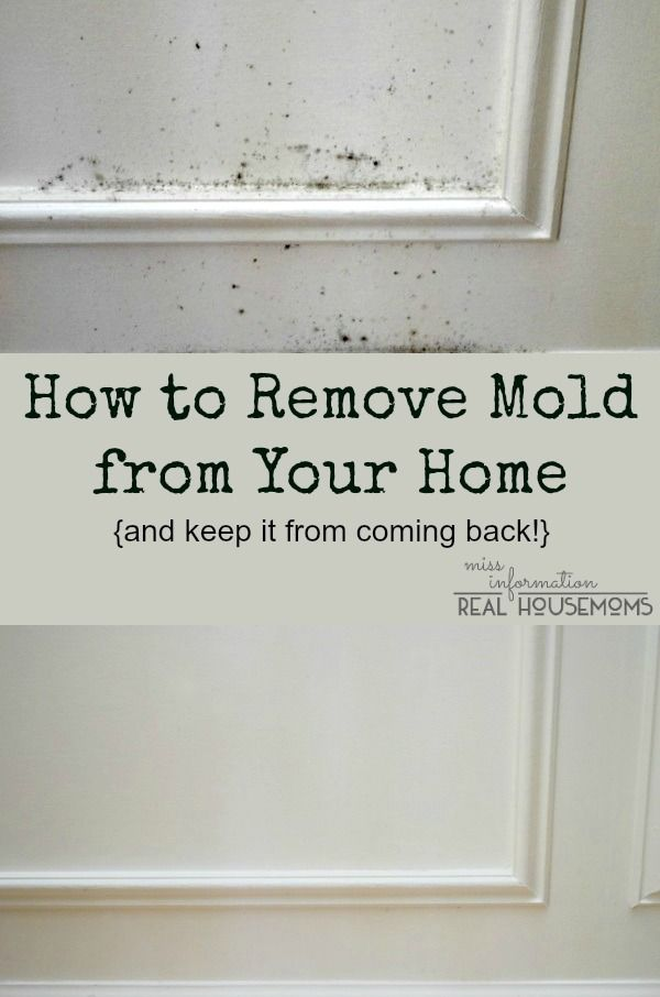 how to clean mold from wood
