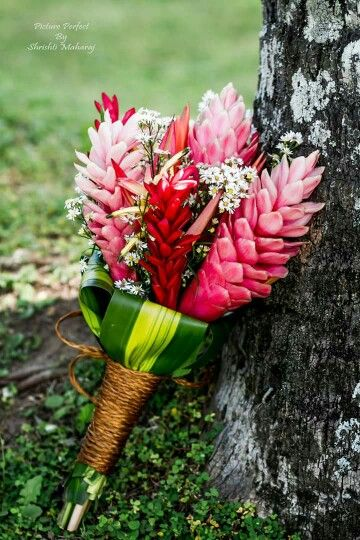 Ginger Flowers As Tropical Wedding Bouquet Simple Wedding Bouquets Tropical Wedding Bouquets Wedding Flowers
