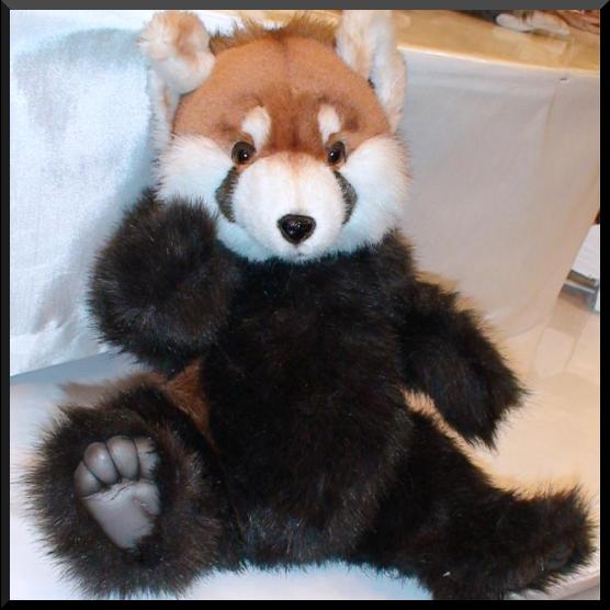 Bonnie Red Panda Bears Display Prop Decor Luxury Fine Studio