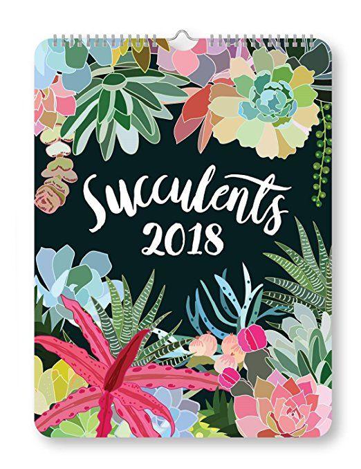 Orange Circle Studio 2018 Poster Wall Calendar, Succulents The