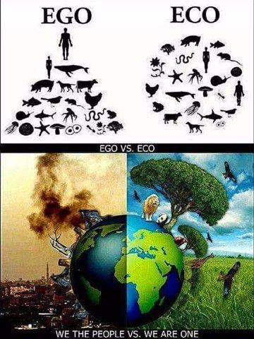 Imagenes Del Deterioro Ambiental Y La Contaminacion Animadas