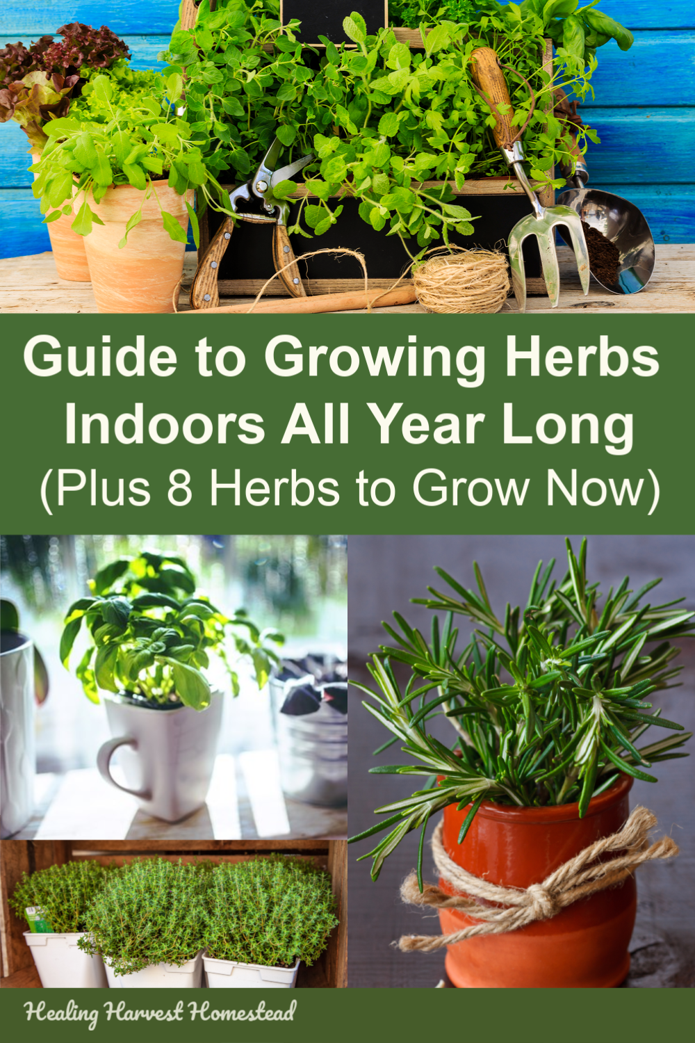 The Ultimate Guide To Growing Herbs Indoors All Year Long 400 x 300