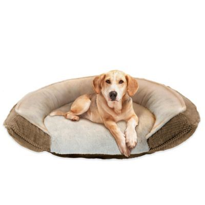Pawslife Orthopedic Step In 45 Inch X 34 Inch Pet Bed With