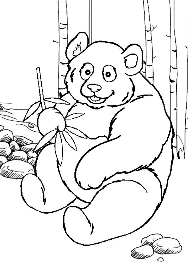 Free online printable kids colouring pages panda colouring page