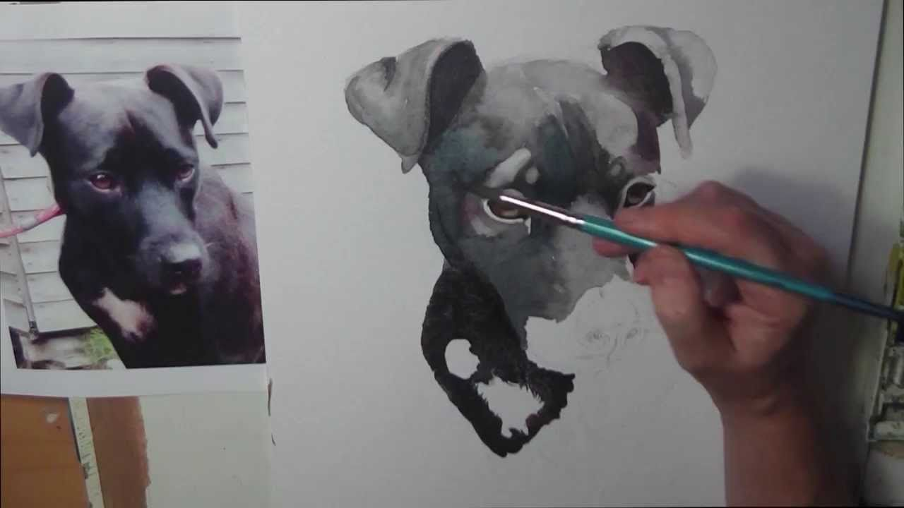 Painting A Watercolour Portrait Of A Black Dog By Gill Bustamante