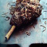 Spiced Whole Leg of Lamb Recipe | Reza Mahammad