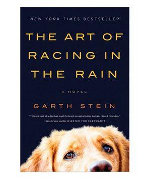 Summer Reading List: The Art of Racing the Rain by Garth Stein