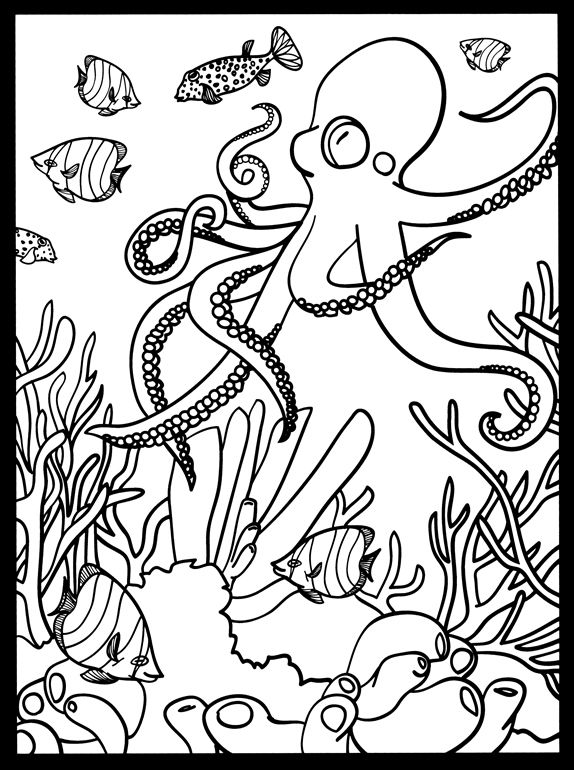 Coral Reef Stained Glass sample pages @ Dover Publications | Fish ...