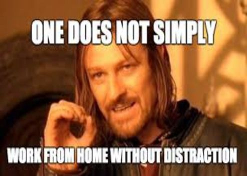 ONE DOES NOT SIMPLY WORK FROM HOME WITHOUT DISTRACTION ...
