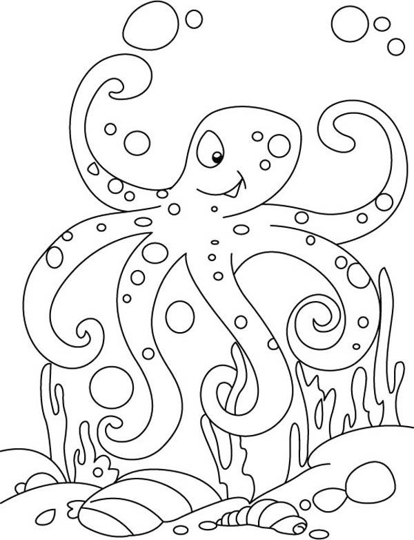 Octopus Winking Coloring Page : Color Luna di 2020