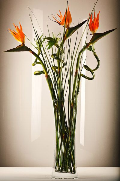 Bamboo Birds Of Paradise Arrangements Kingdom Of Flowers My