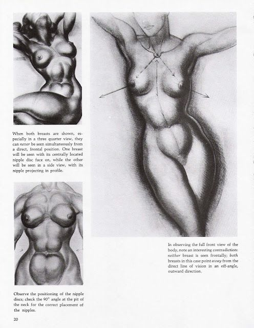 Top Fucking eBook: Dynamic Figure Drawing | teknik anatomi | Pinterest  FW73