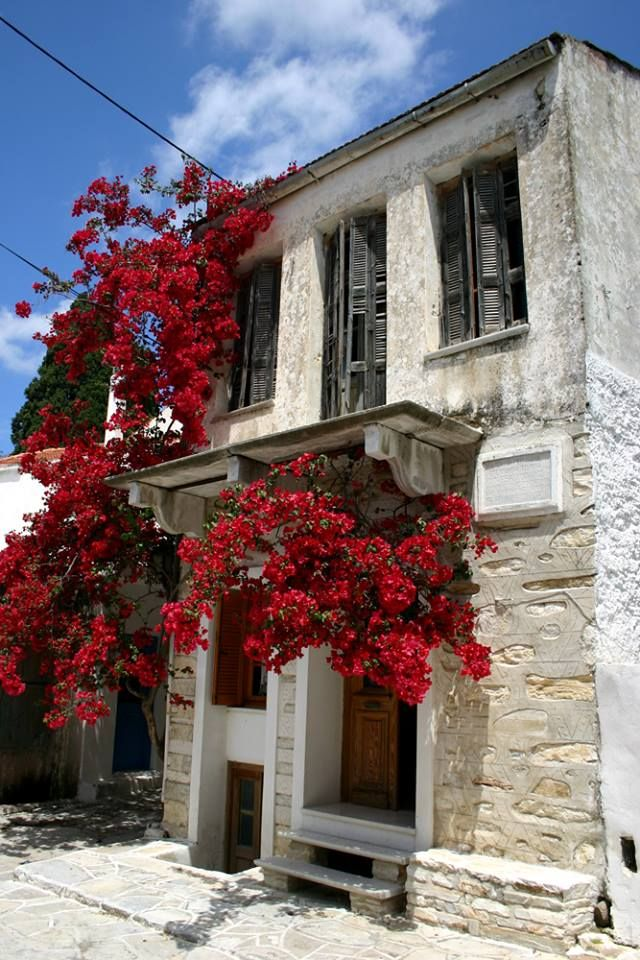 Beautiful house with red bougainvillea in Naxos https://www.facebook.com/IncroyableGrece