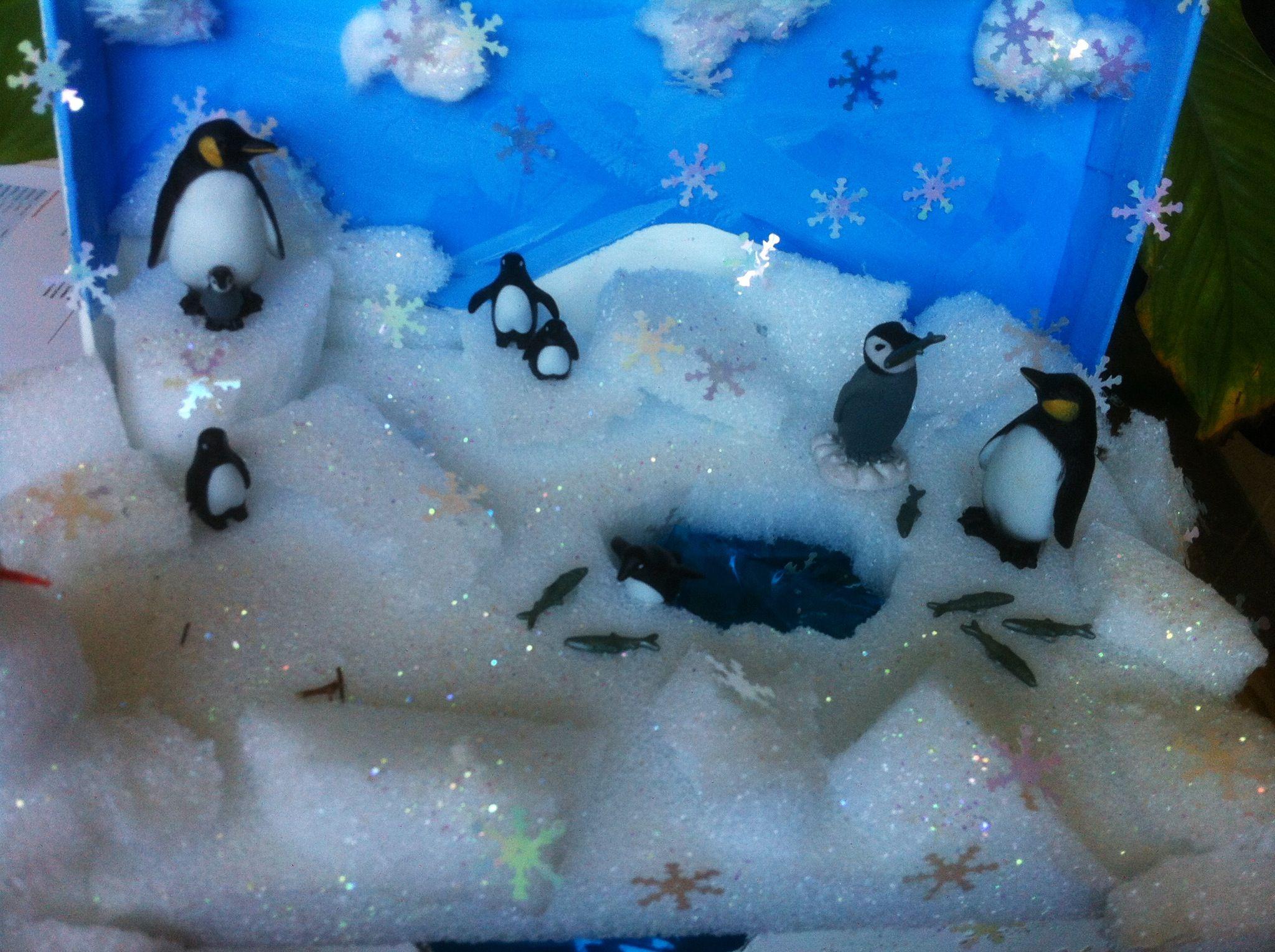 Penguins Habitat 3d Classroom Shoe Box Project Penguin Habitat