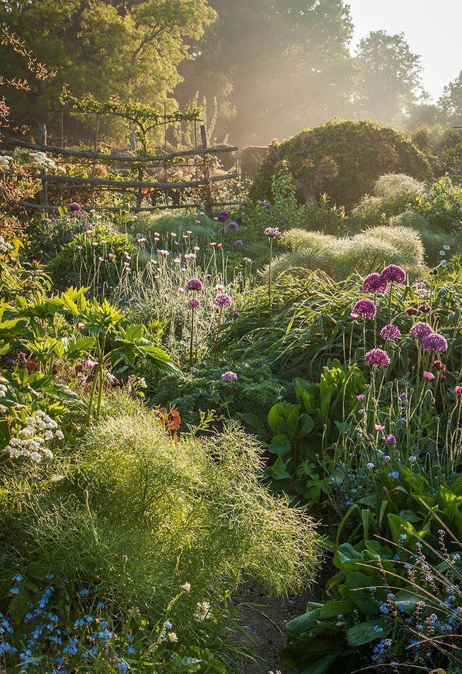 Atemberaubende Bilder Fangen Die Garten Der Natur Ein Garten Garten Ideen