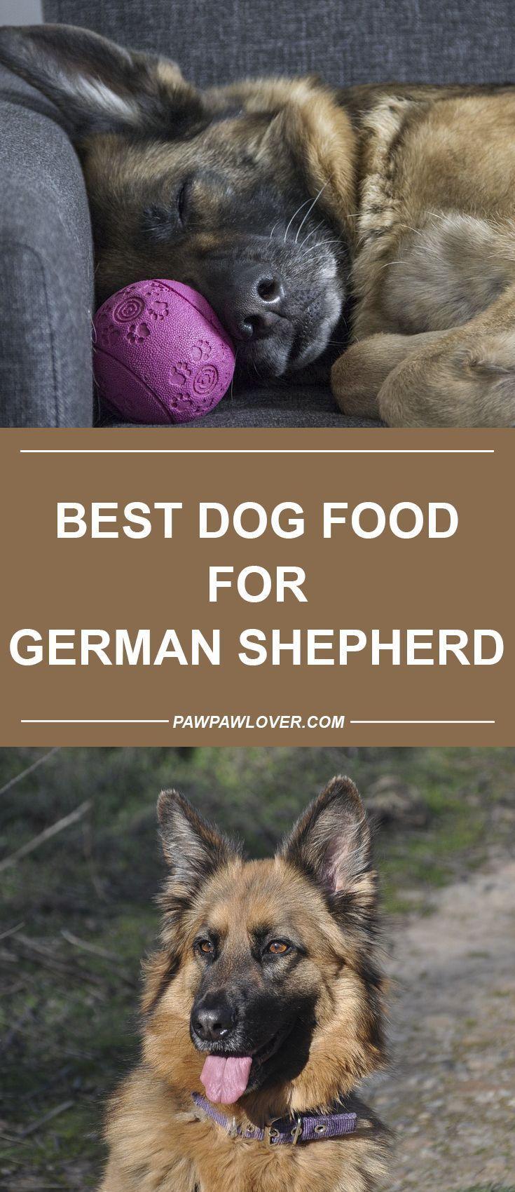 Germanshepherd German Shepherd Best Dog Food German Shepherd
