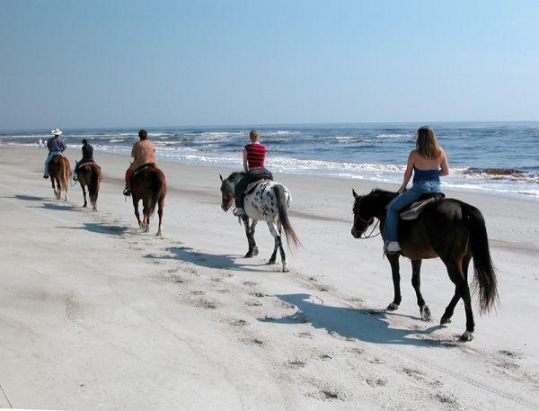 Beaches And Parks Near Stuart Florida
