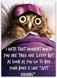 Resultado De Imagem Para Minion Owl Funny Good Night So True