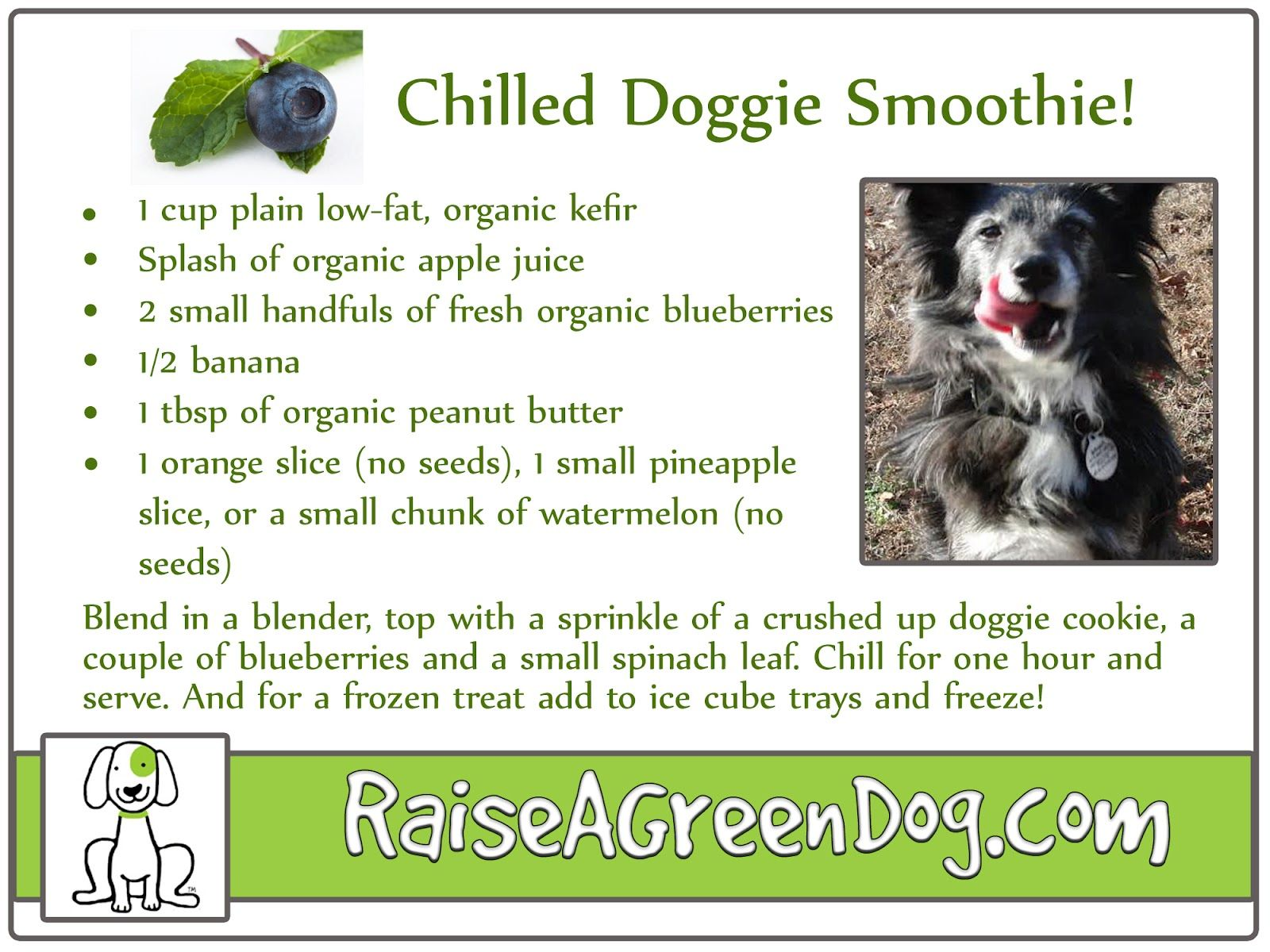 Chilled Doggie Smoothies a yummy cool healthy treat for your