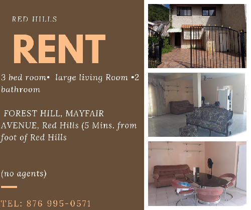 Brand New 1 Bdrm For Short Long Term Rental In New Kingston Kingston St Andrew Apartments In 2021 Renting A House Rent Places To Rent