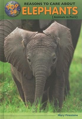 readers will learn about an elephant s ears trunk and teeth what