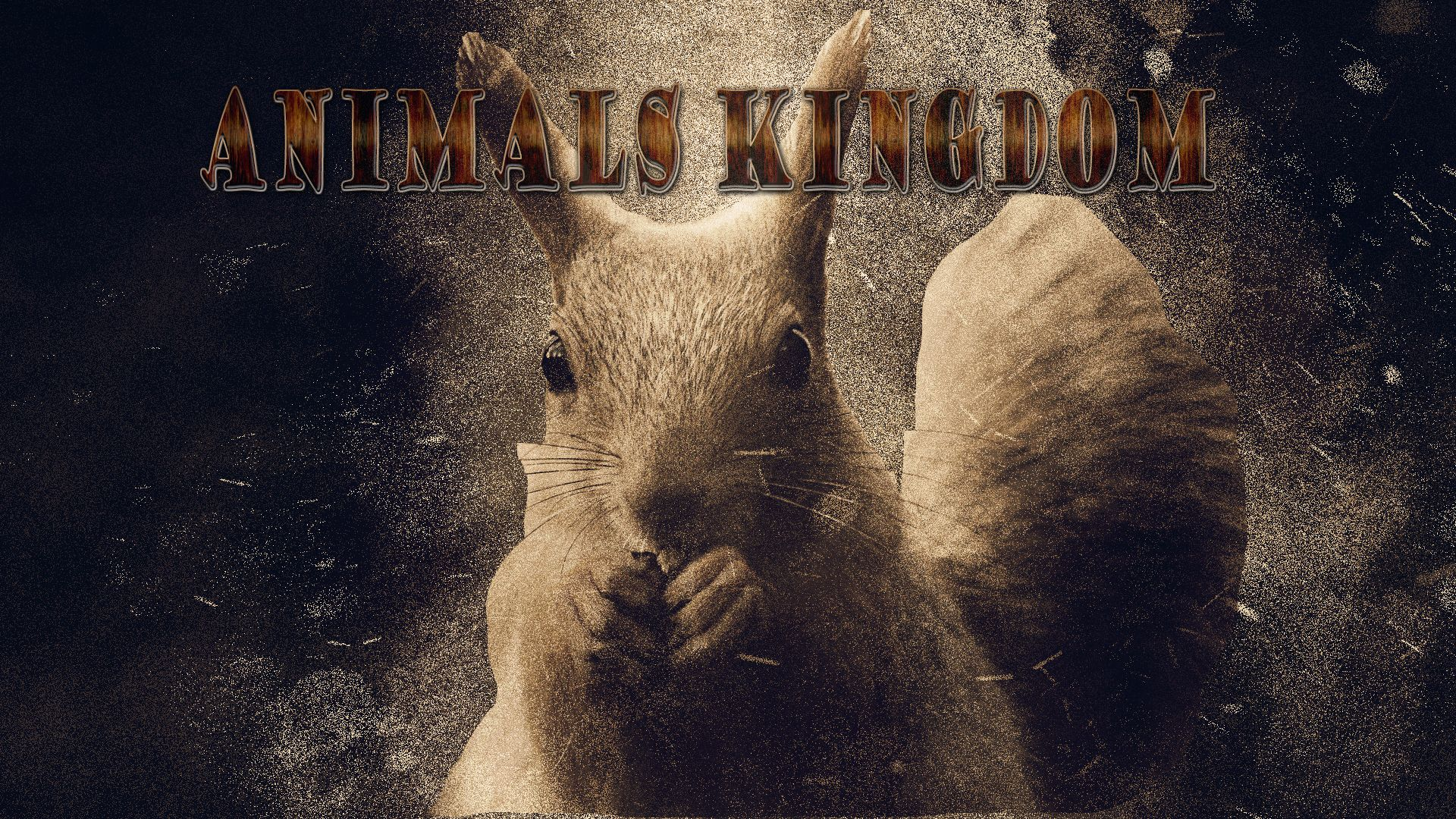 """Images For Print or T shirts Design-""""Animals kingdom""""   Media Ads Labs"""
