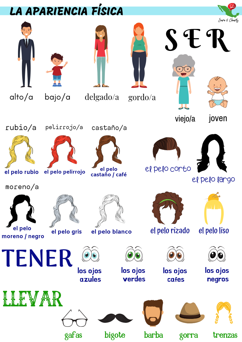 Describing Physical Appearances A1 Spanish for kids, teens, adults - picture dictionary style