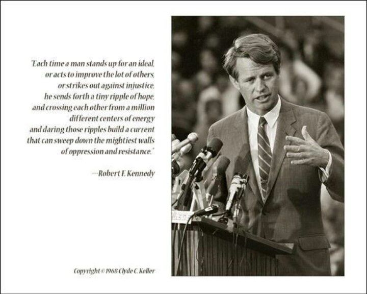 Image result for bobby kennedy south africa speech