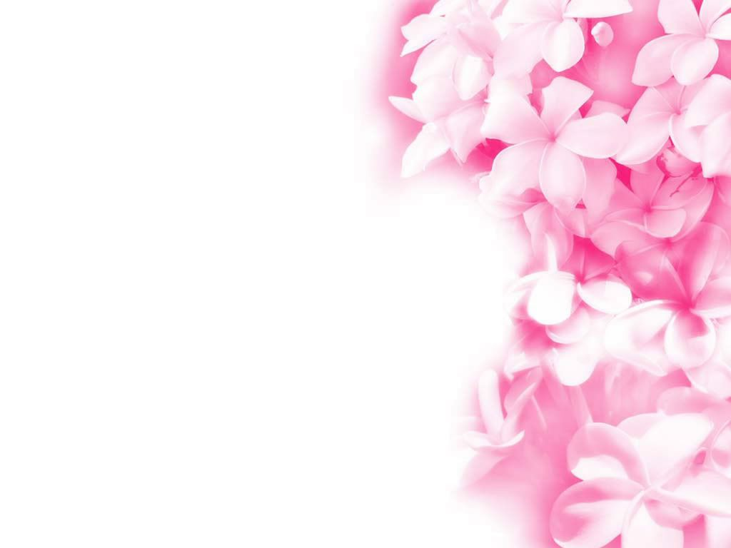 Pink Floral Modern Pink Wallpaper Wallpaper Cartoon Wallpaper