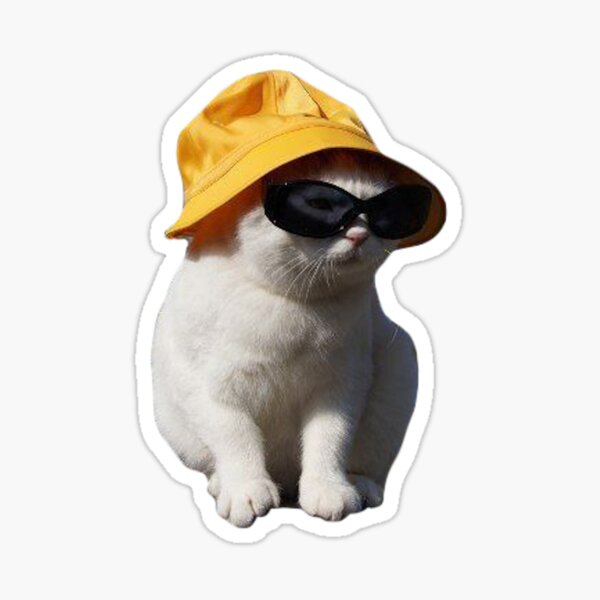 Laughing Cat Sticker By Masoncarr2244 In 2021 Cat Stickers Cute Stickers Aesthetic Stickers
