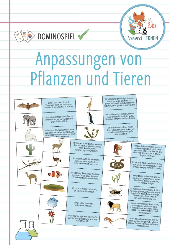 Pflanzen und Tiere Adaptionen   Domino Spiel – Unterrichtsmaterial ...