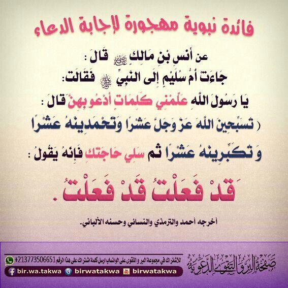 اسال الله ان يهدينا لا اله الا الله الله مجيب الدعاء الله لطيف بنا Islam Facts Wisdom Quotes Quotes