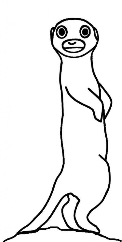 Meerkat Coloring Pages Dibujos Para Pintar Dibujos Pintar