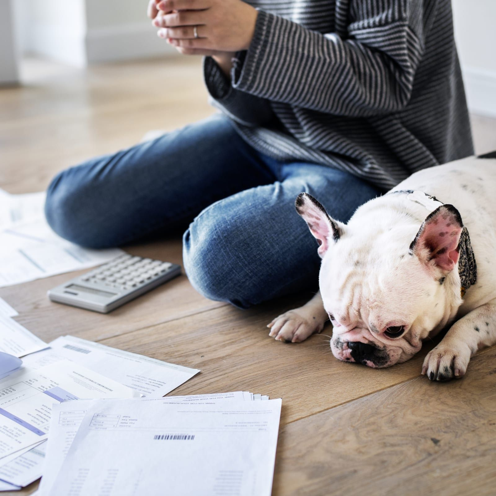 Fake proof of renters insurance ten things you need to