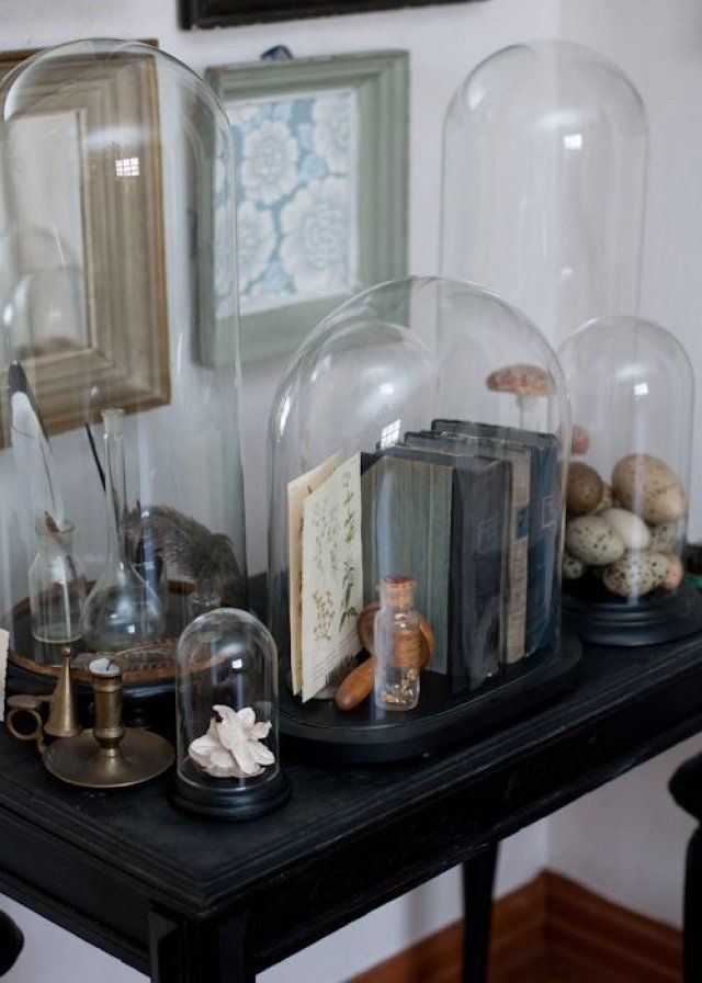 objets sous cloche nos inspirations en 2019 endroits. Black Bedroom Furniture Sets. Home Design Ideas