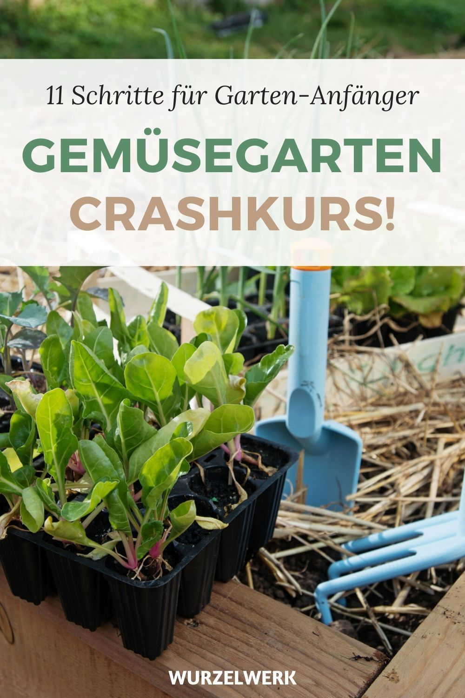 Gemusegarten Fur Anfanger Crashkurs In 11 Schritten Garten Bepflanzen Garten Und Selbstversorger Garten