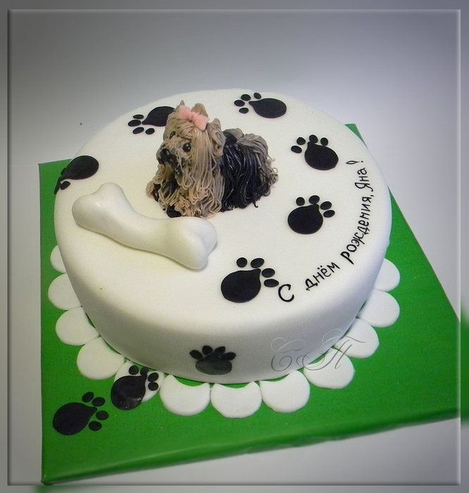 "Cake ""Puppy Yorkshire Terrier"""