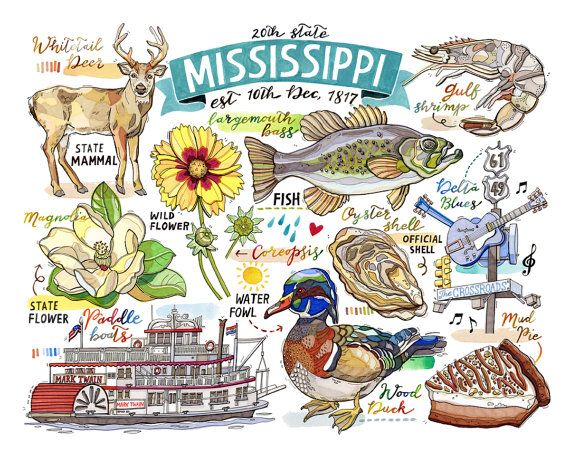 Mississippi Print State Symbols Illustration Home Decor The