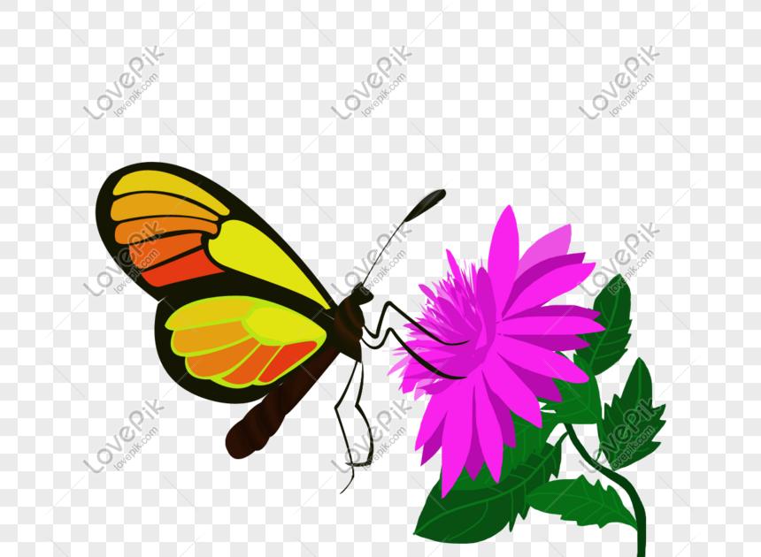 28 Gambar Kartun Kupu Kupu Dan Bunga Kupu Kupu Cinta Bunga