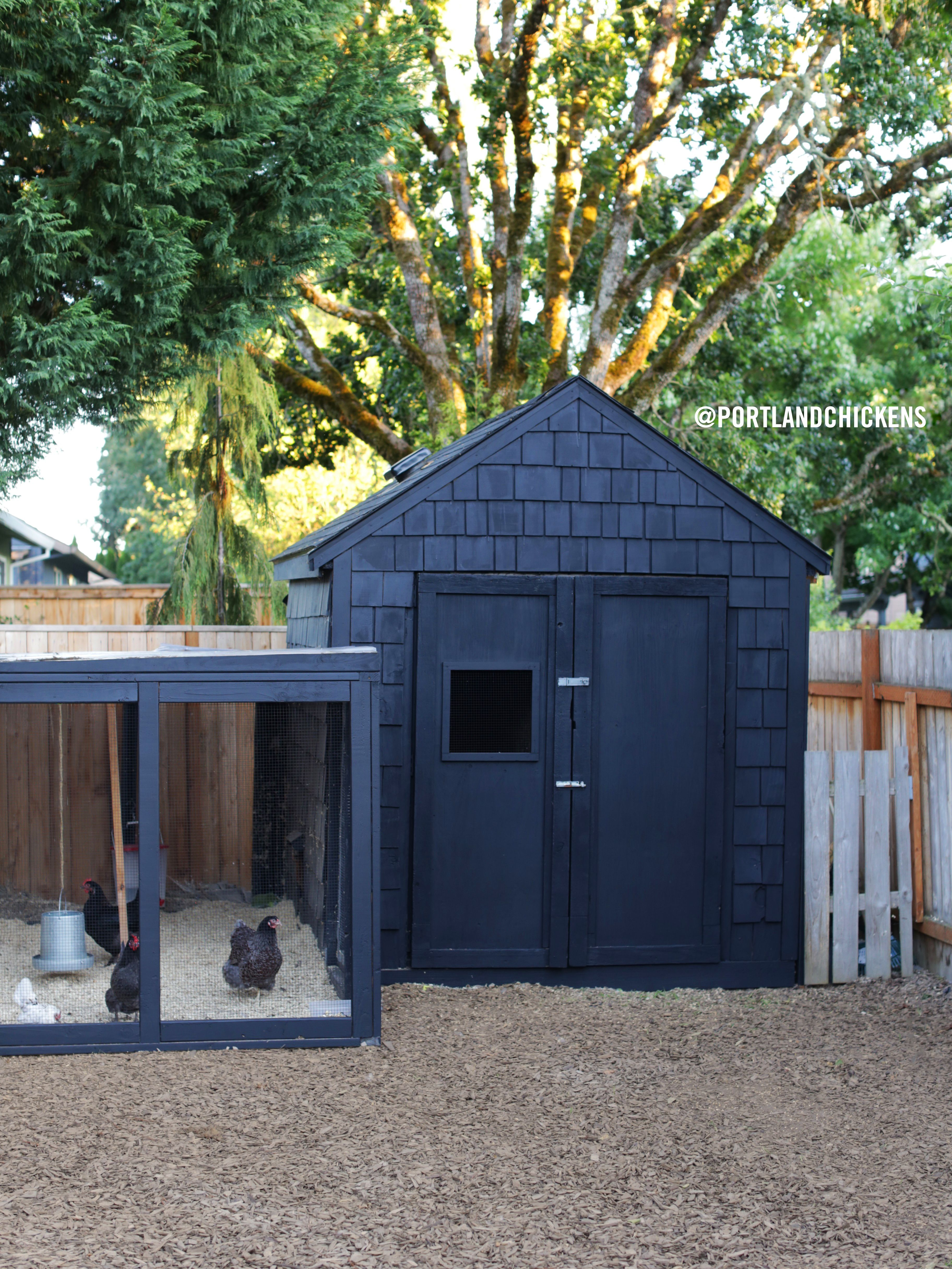 Portland Chicken S Black Chicken Coop Simply Painting The Coop Black Instantly Updated It And Made It Feel Mo Chicken Coop Run Chicken Coop Urban Chicken Coop