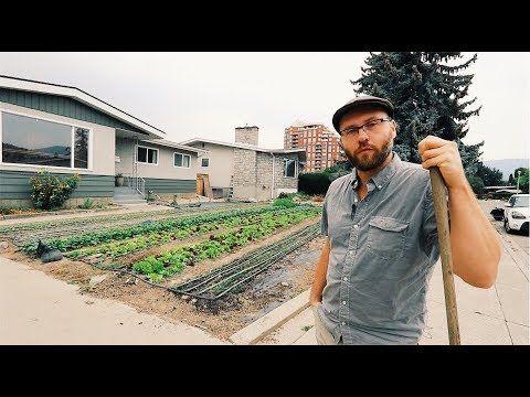 How to Set up a Profitable (backyard) Farm - YouTube ...