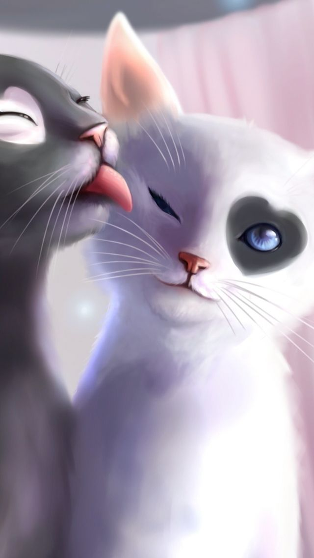 Wallpaper Cat Art Animal Drawings Cat Drawing Anime white cat wallpaper