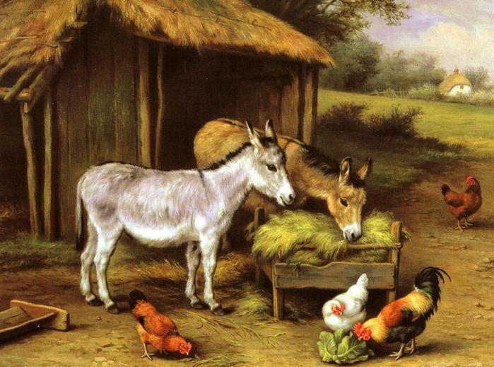 девочка картинка скотный двор домашние животные пол