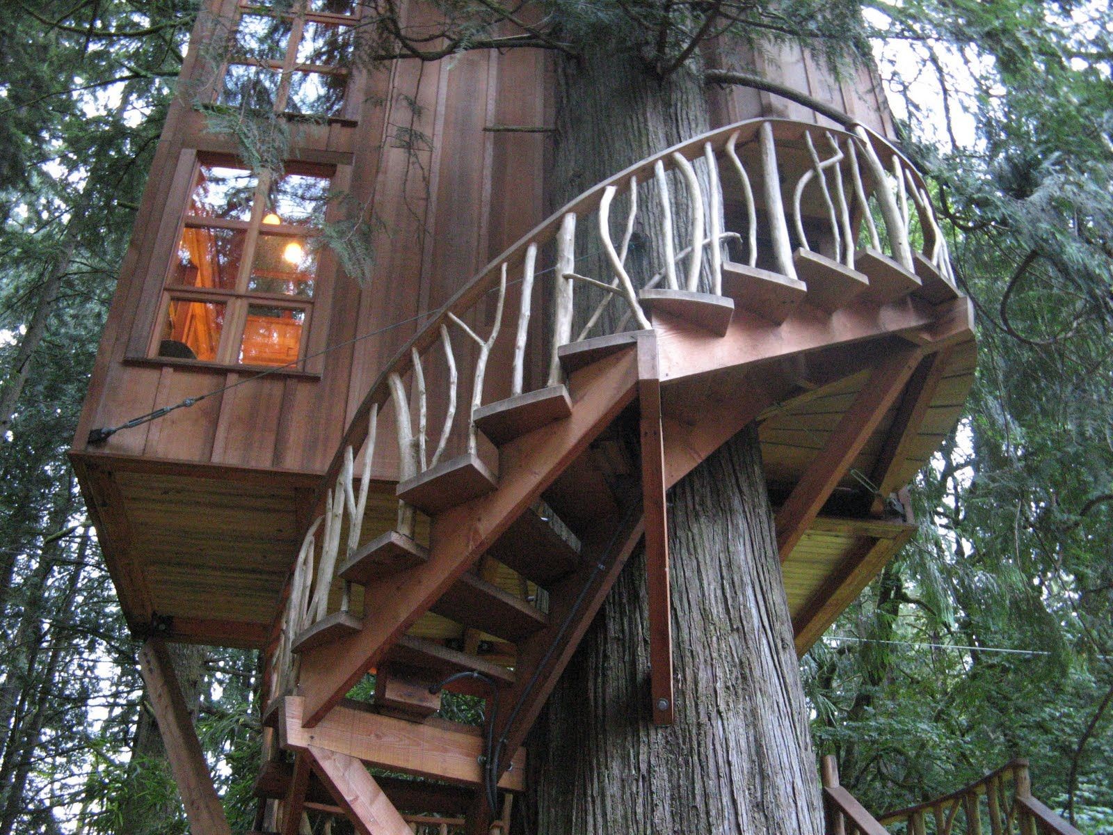 Treehouse spiral staircase Treehouses Pinterest