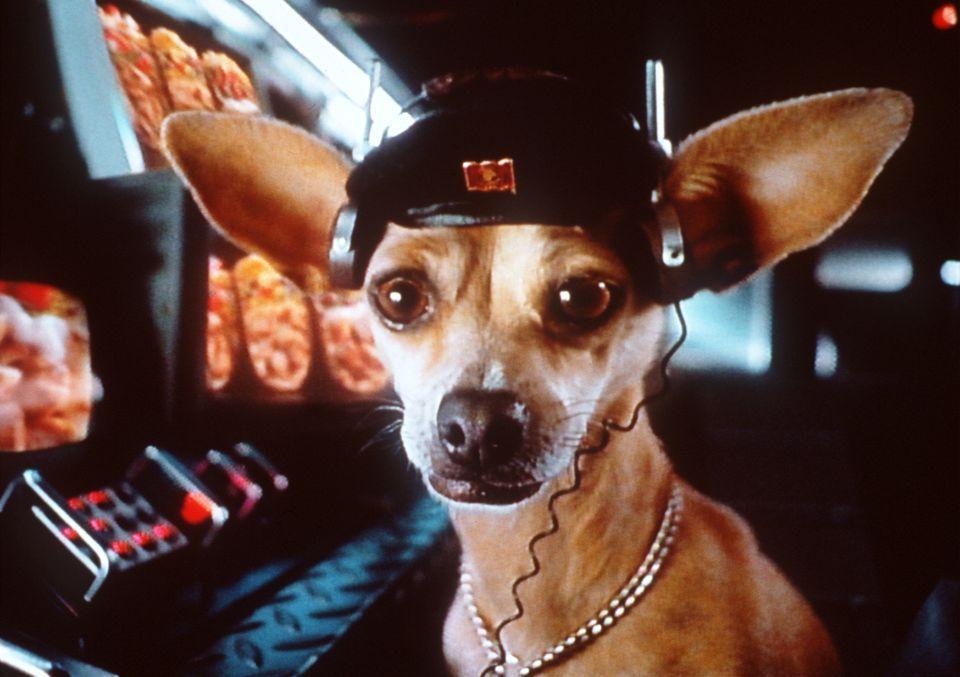 Yo Quiero Taco Bell Gidget The Chihuahua Premiered As Taco