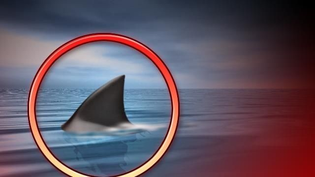 Second shark bite this month reported in Atlantic Beach | News  - WCTI NewsChannel 12