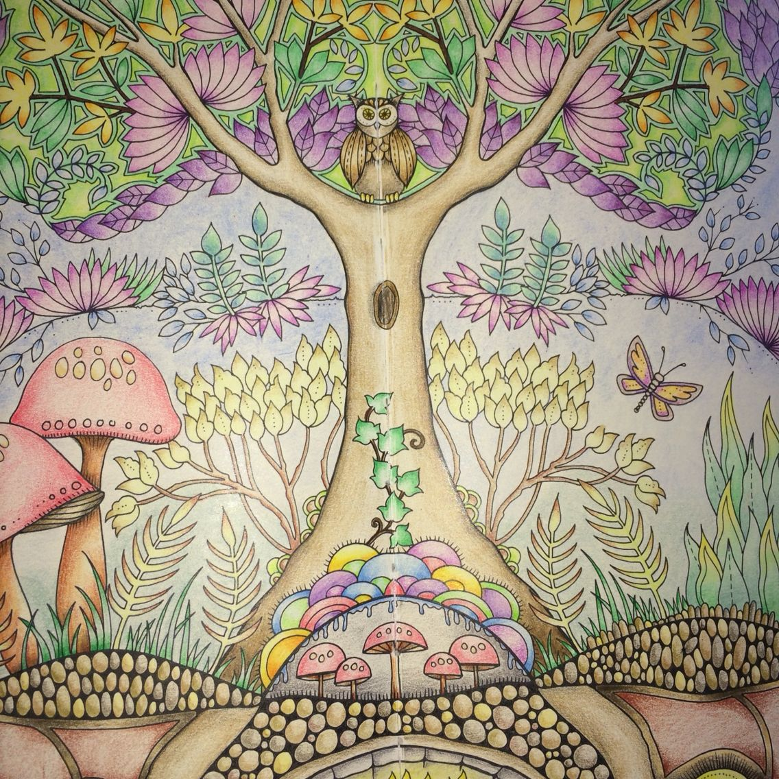Completed Enchanted Forest In Colouring Book By Joanna Basford Using Derwent Coloursoft Pencils Joannabasford Enchantedforest
